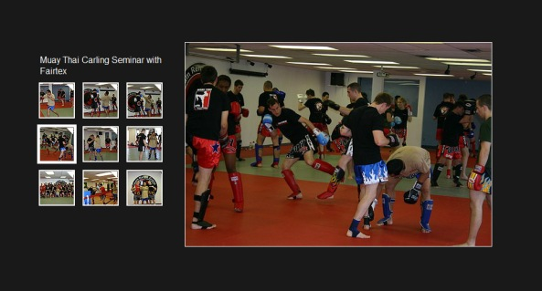 Ottawa Academy of Martial Arts - Muay Thai Gallery